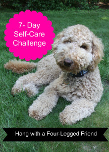 Self Care Challenge Animals Large File