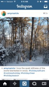 Snow Blanket Insta