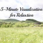 5 Minute Visualization Pin