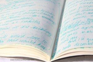 Journal Pic Metaphor