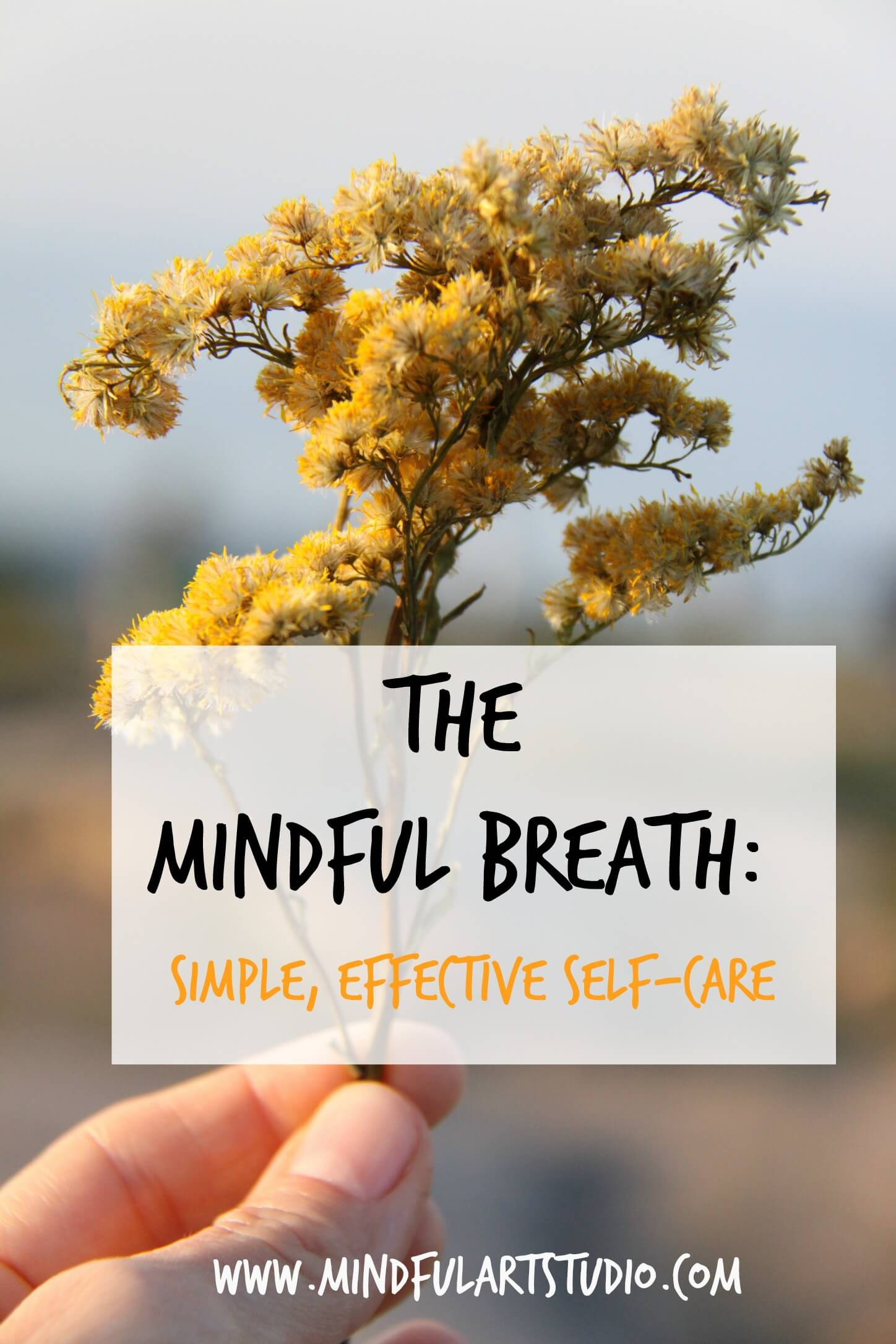 The Mindful Breath: A Simple Form of Self-Care